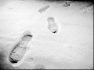 Footprints In The Snow by Dodgerton Skillhause